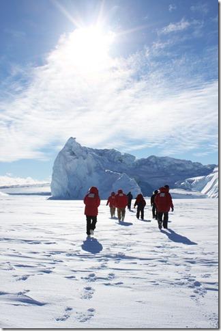 Big Reds Walk to Iceberg